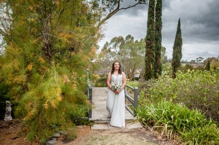Littlewood Agapanthus farm SA Wedding (48)