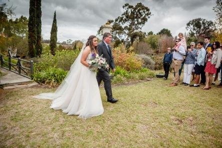 Littlewood Agapanthus farm SA Wedding (52)